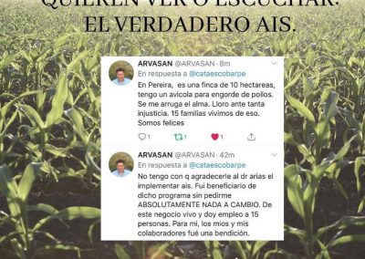 4-PEREIRA